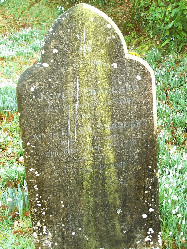 james and elza sharland's grave
