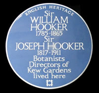 blue wall plaque