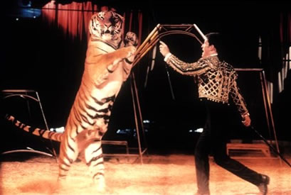 Richard Chipperfield in ring with tiger
